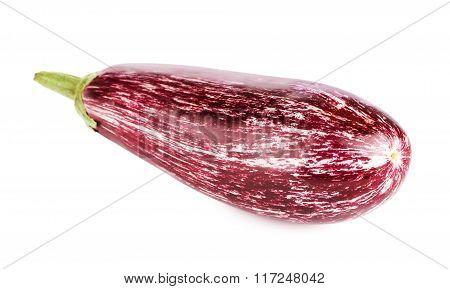 Fresh Purple Eggplant