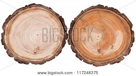 Round Cut Wood Background