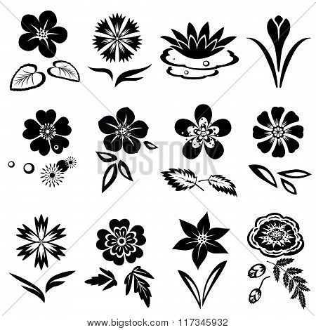 Flower set. Nasturtium, primula, lily, viola, anemone, crocus, cornflower, poppy, orchid. Floral bla