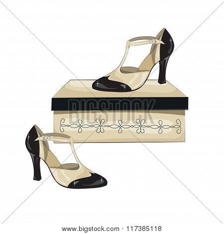 Elegant women's shoes on the box.