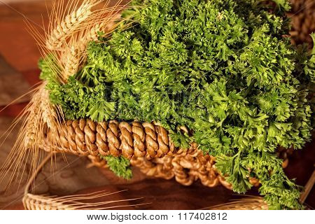Parsely In A Basket
