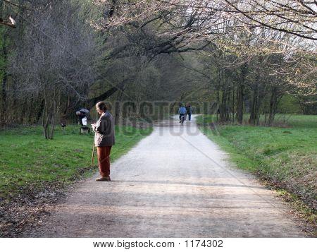 Spring Walkers