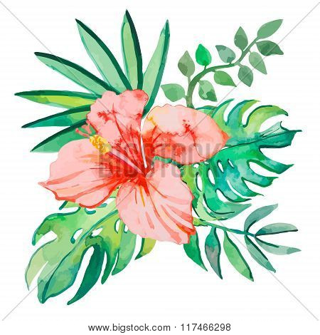 Tropical leaves isolated on white background.  plants: exotic flower hibiscus and leaves. Vector.