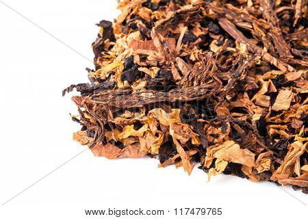 dried smoking tobacco. Isolated on a white background. poster