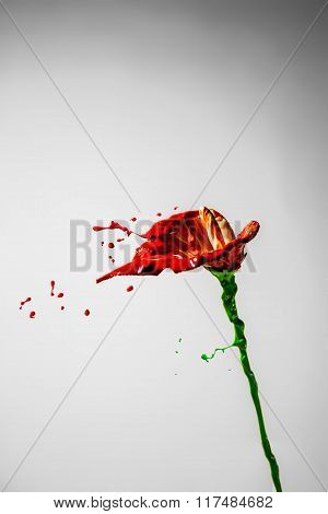 Beautiful Red And Green Paint Made Orchid Flower