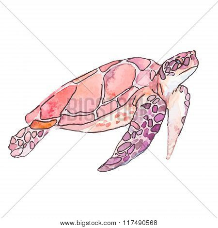 Sea turtles. Ocean vector.