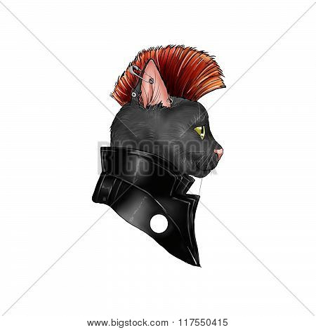 hand drawn illustration of a feline dressed as a punk rock character