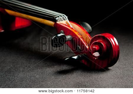 violing scroll on dark velvet background