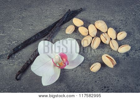 Vintage Photo, Pistachio Nuts, Blooming Orchid And Fragrant Vanilla Sticks, Cosmetic Ingredients