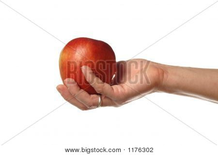 The Apple On The Hand