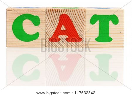 Cat word formed by colorful wooden alphabet blocks, isolated on white background