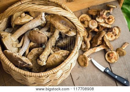Mushrooms In A Basket On A Wooden Floor