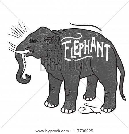 Elephant Animals With Sample Text. Retro Style. Hand Drawn Art Works. Hipster Wear. Vector Inspirational Illustration. Beautiful Elephant. Vector Image. Vintage Style. Elephant Standing.