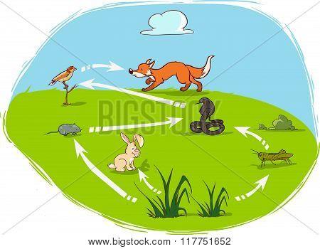 cartoon illustration vector illustration of a ecosystem-diagram