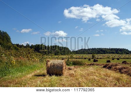 Panorama with haystacks in the field.