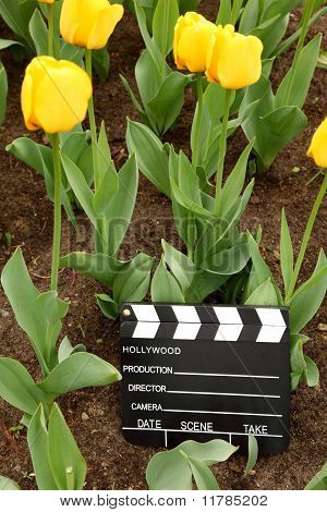 black and white cinema clapper board on ground among field of yellow tulips