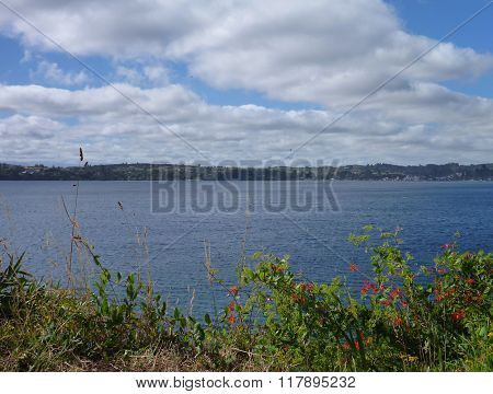Lake In Puerto Varas Vith Blooming Flowers