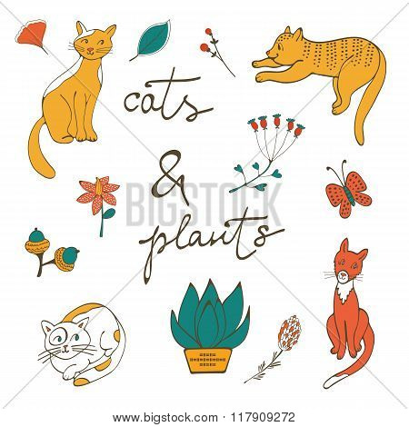 Illustration of cats plants flowers and twigs