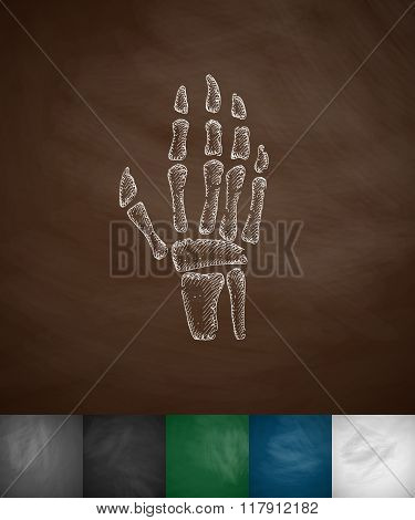 X-ray hand icon