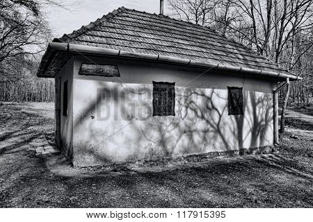 Creepy Cottage  In Forest, Image Of Haunted House, Haunted House With Wooden Windows In The Dark Dee