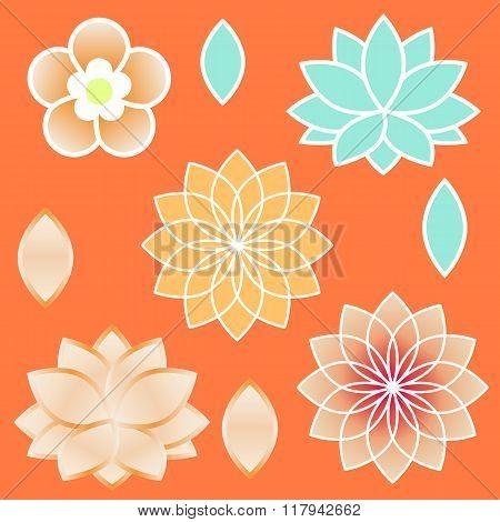 Sacred Geometry Elements Venus Flower And Lotus