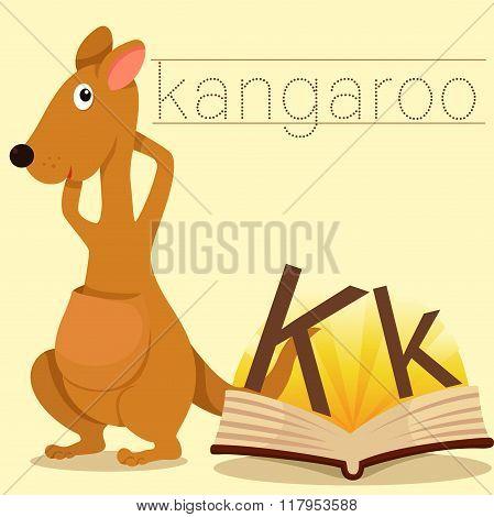 Illustrator of k for kangaroo vocabulary