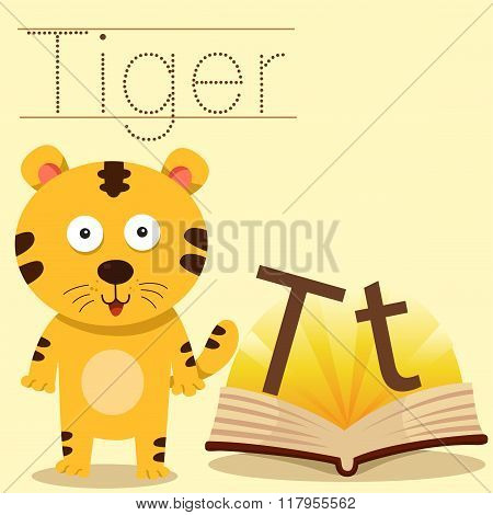 Illustrator of t for tiger vocabulary