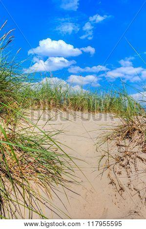 Beach Holidays In Summer