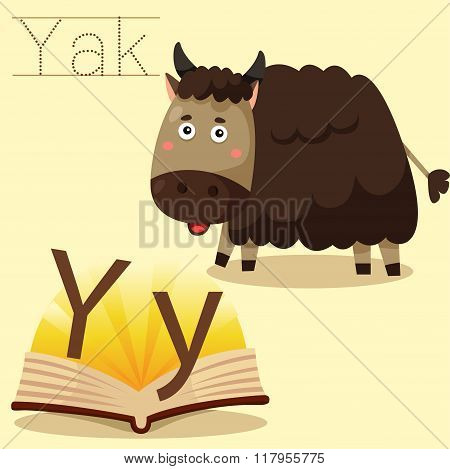Illustrator of y for yak vocabulary