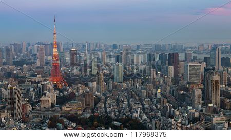 Tokyo city downtown skyline aerial view