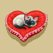 Siam kitty is lying on a red heart shaped pillow. poster