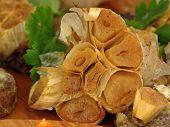 Garlic rose