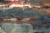 geologic stone close up. natural texture of jasper poster