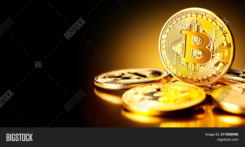 bitcointalk user id no