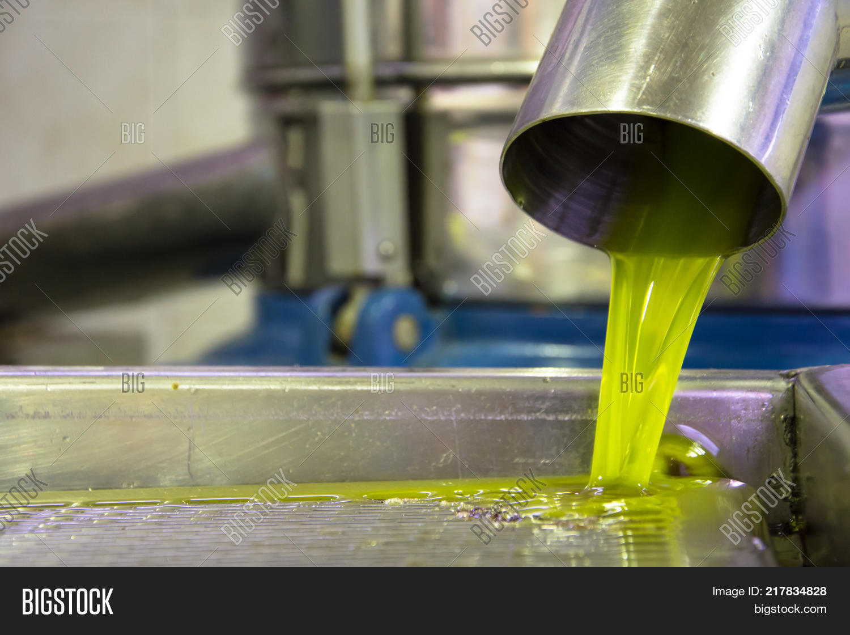 Fresh Virgin Olive Oil Image & Photo (Free Trial) | Bigstock