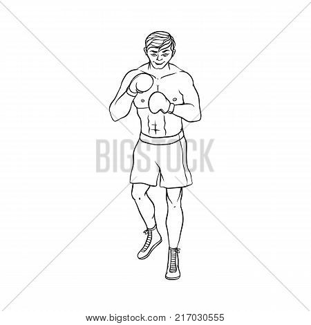 Young Caucasian male boxer in boxing gloves, shorts and boots ready to fight, hand drawn cartoon vector illustration isolated on white background. Front view portrait of young Caucasian male boxer