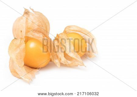 Cape Gooseberry physalis fruit (Physalis peruviana) isolated on a white background