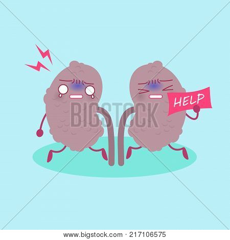 kidney with health concept on the green background