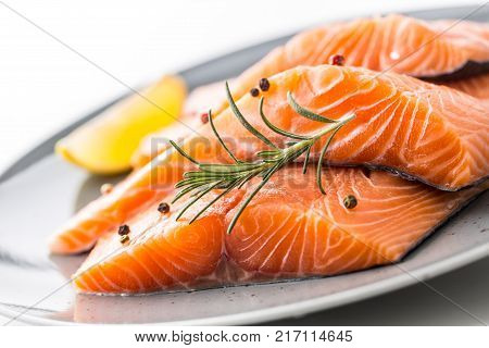 Salmon Fish. Salmon Fillet Isolated On White