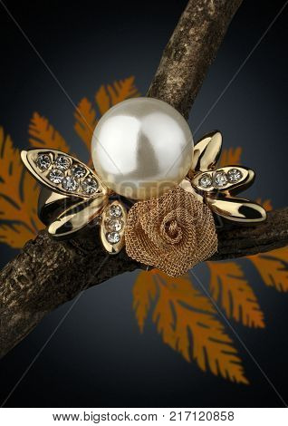 Jewelery ring on twig with leaves on dark background