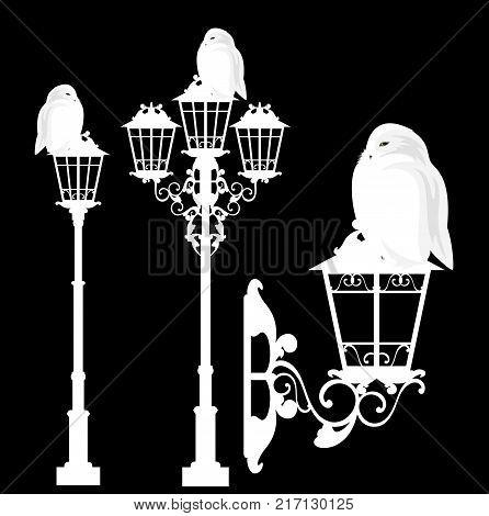 white snowy owl sitting on a streetlight - christmas theme vector design set