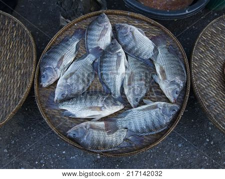 Fresh Nile Fish On Street Market
