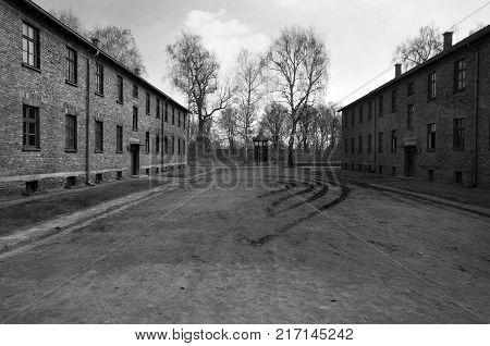AUSCHWITZ, POLAND - March 30 2012: remains of barracks in Birkenau, Treblinka 2.
