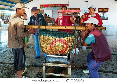 Jembrana Bali Island Indonesia - September 20 2015: A way of life earning money in Bali. In Perancak fishing village harbour Indonesian dockers weight day catch for shipping fish to cannery