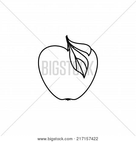 vector flat sketch style black and white contour apple. Isolated illustration on a white background. Healthy vegetarian eating, dieting and lifestyle design object.