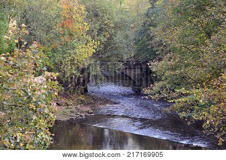 the river calder near hebden bridge with stone bridge and surrounding trees