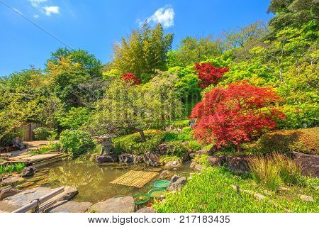 Kamakura, Japan - April 23, 2017: small lake surrounded by a flowering garden in a sunny day at Hase-dera Temple or Hase-kannon, Kanagawa Prefecture, Kamakura.