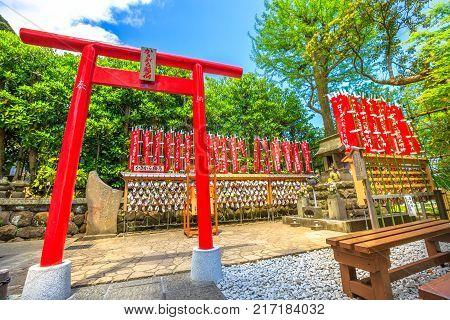 Kamakura, Japan - April 23, 2017: red Torii gate at Kakigara-Inari Shrine in Hase-dera Temple garden, Kanagawa Prefecture, in beautiful sunny day with blue sky. Hasedera shinto is popular landmark