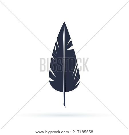 Feather vector icon isolated on white background. Vector illustration in a flat style, Silhouettes of dark feather as element for design.