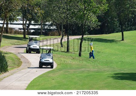 Road for golf cart in golf course.Caddy